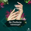 De perfecte salonnagel